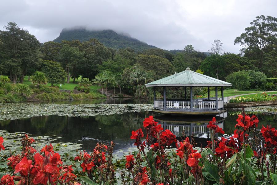Wollongong Botanic Garden Gardens